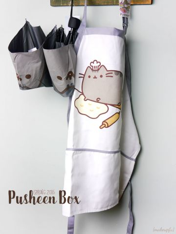 Pusheen Box Spring 2016: Umbrella and apron.