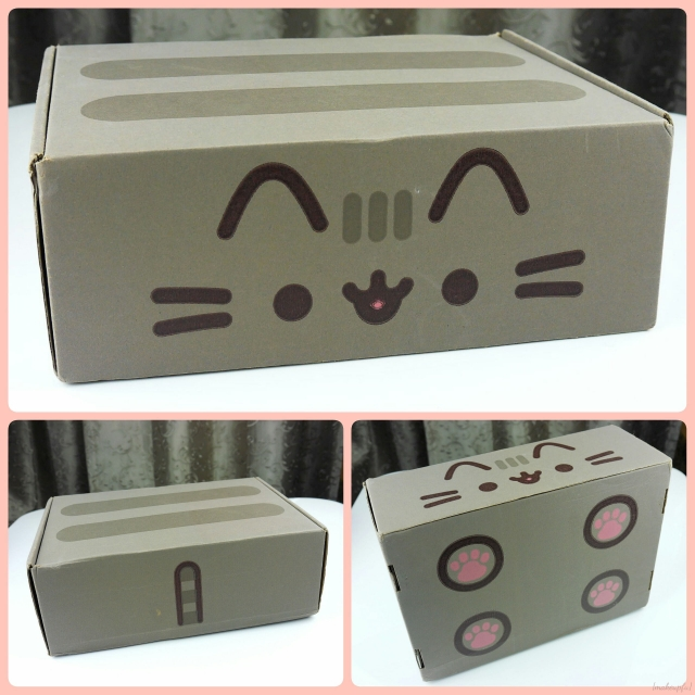 The adorable packaging for the Pusheen Box.