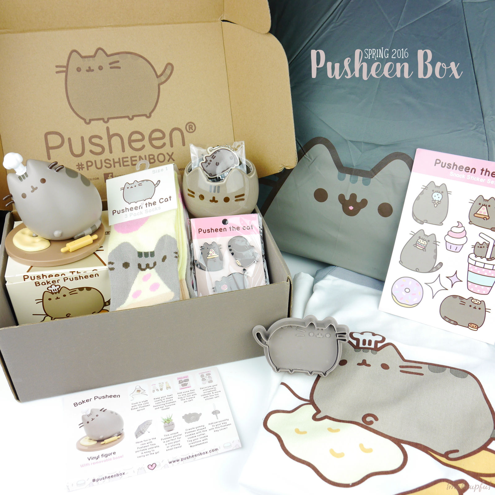 Image Result For Pusheen With A