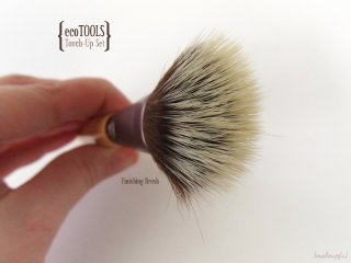 Finishing Brush from the ecoTOOLS Four Piece Touch-Up Set